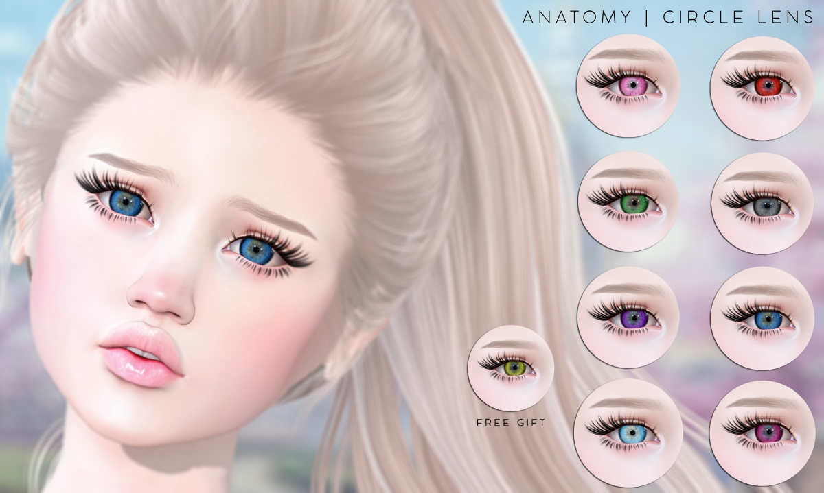 ANATOMY: Circle Lens Eyes